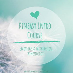 kineasy intro course